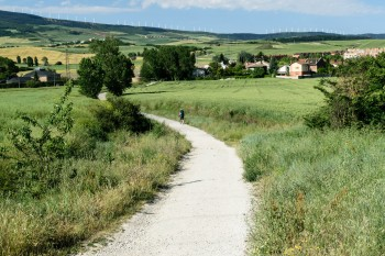 Fields on the outskirts of Pamplona