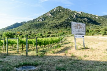 Beginning of the alternate, scenic, route via Luquin