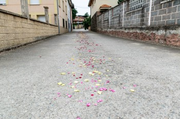 Flower petals on the street in preparation for a festival