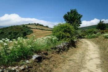 The climb to O'Cebreiro