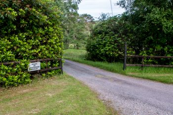 Road into the Fleming Estate