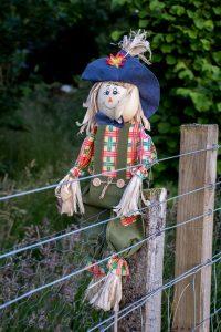 Garden scarecrow, B&B, Glencoe