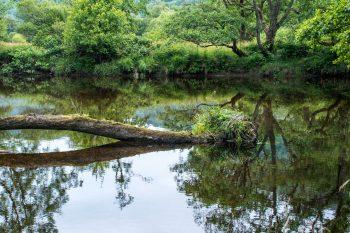 River Falloch, near Beinglas Farm, Inverarnan
