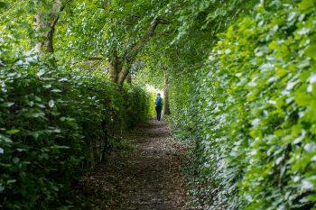 Path leaving Drymen