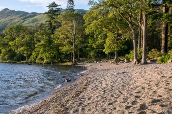 Loch Lomond shore, evening